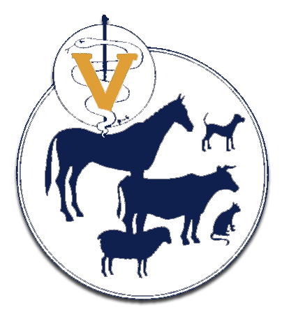 commonwealth veterinary clinic website our doctors